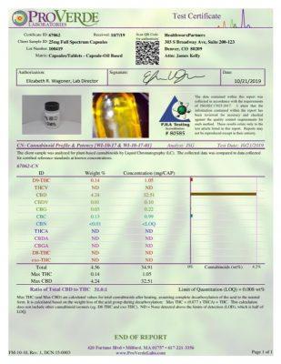 FULL SPECTRUM CBD CAPSULES report