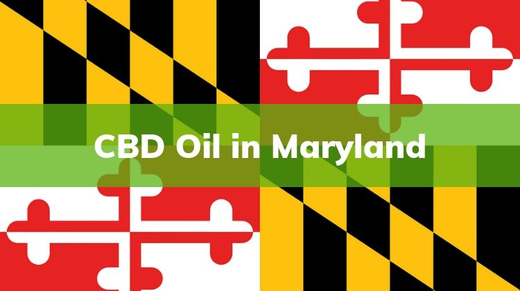 Maryland , Where to buy CBD Oil in Maryland , Buy CBD Oil , CBD Oil in Maryland.